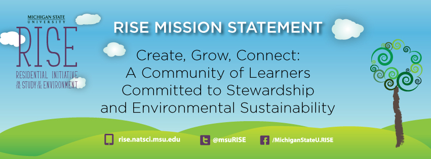 RISE mission statement graphic