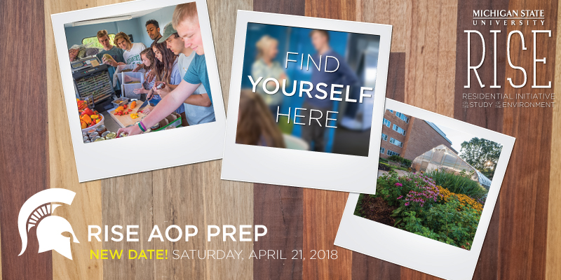 AOP Prep Workshop Header Image with Poloroid Style Images and Text